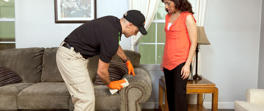 Venice, FL carpet upholstery cleaning